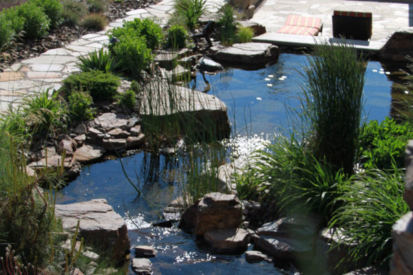 Water Feature and Rock Wall