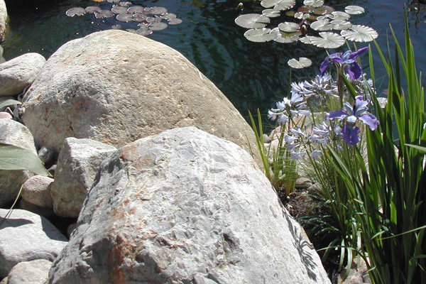 Rocks with Pond